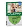Advantage 400 für Hunde Lösung