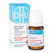 DHU Silicea Pentarkan für das Bindegewebe Tabletten *