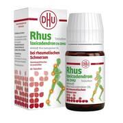 Rhus toxicodendron D6 DHU bei rheumatischen Schmerzen Tabletten *